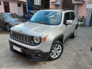 Jeep Renegade business (1)