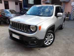 Jeep Renegade business (2)