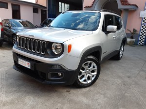 Jeep Renegade business (3)