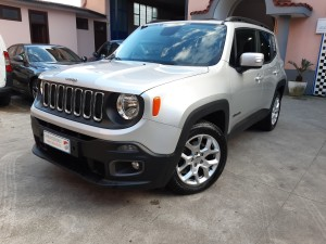 Jeep Renegade business (4)