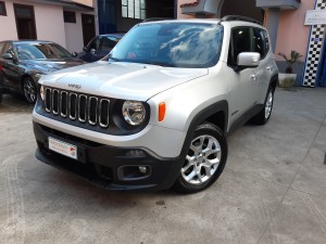 Jeep Renegade business (5)