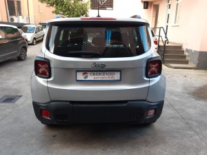 Jeep Renegade business (8)