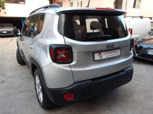 Jeep Renegade business (9)