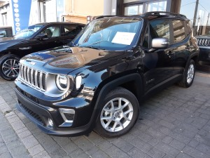 Jeep Renegade MY 2019 (2)